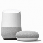 Google Home big and small